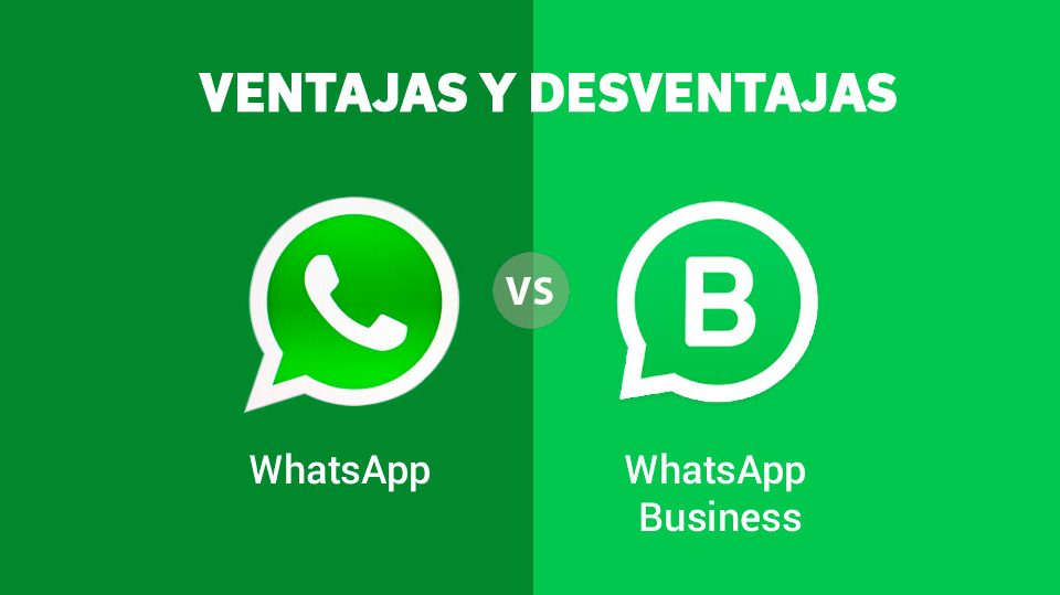 WhatsApp vs WhatsApp Business
